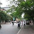 13 Wider Street