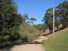 Glen_park_trail