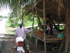 Vietnam_fruit_stand